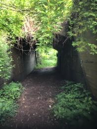 Fort Wadsworth (Staten Island) 06 SI-nyc