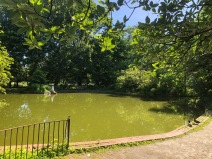 Snug Harbor Pond