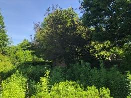 Snug Harbor, secret garden
