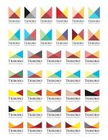Triboro PT rebrand logos